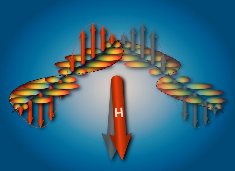 Depending on the orientation of the magnetic field (H), the triggered spin densi