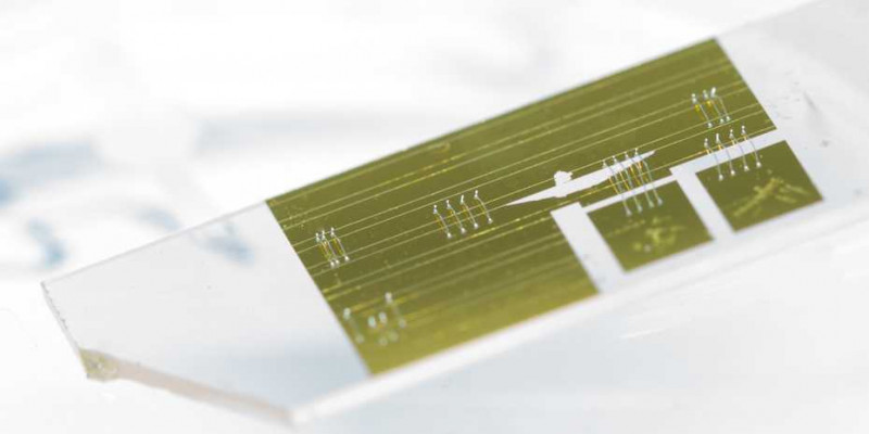 Approximately 2 cm in length, this chip makes it possible to precisely analyse t