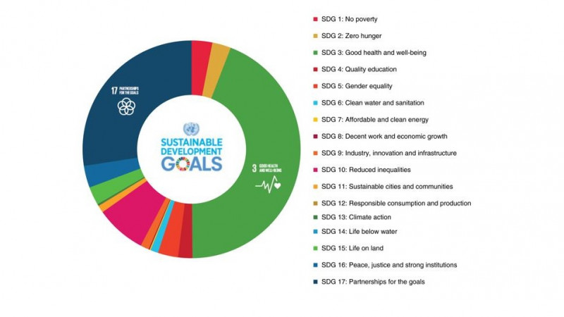 The Diagram shows the frequency of SDGs addressed by 216 papers published in  Tr