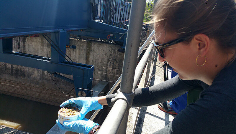 Master's degree student Lara Cayo takes samples of sewage sludge at Werdhö