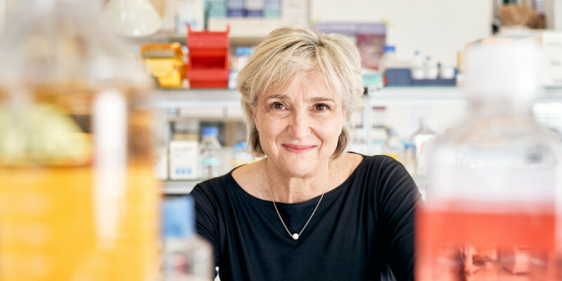 Even in her dual role as researcher and entrepreneur, Lucia Mori's thirst
