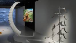 View of the exhibition 'Displacements - Art, Science and the DNA of the Ibex' (P