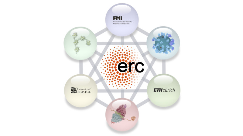 This ERC Synergy Awards will fund a collaboration between the FMI, ETH Zürich an