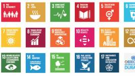 United Nations' Sustainable Objectives