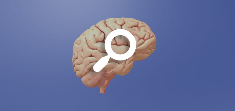 Welcome to the brain - find out how devices and therapies developed by the Wyss