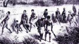 Captives were marched, often in yokes, from the inland areas of Africa to the co